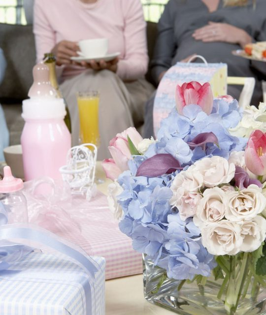 affordable baby shower locations chicago