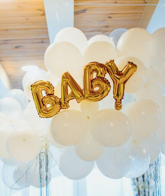 chicago baby shower venue inexpensive